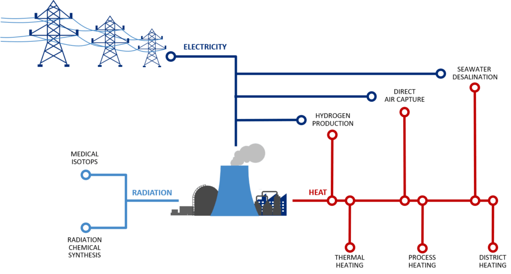 Nuclear Power and Hydrogen Cogeneration